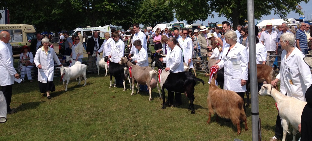 Suffolk County Show & East Anglian Summer Show 2013